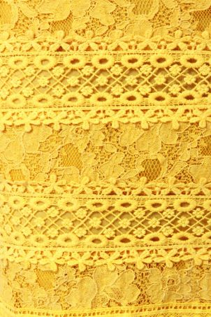 yellowlace2a