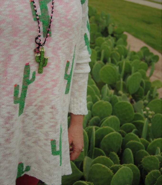 cactusD (2)