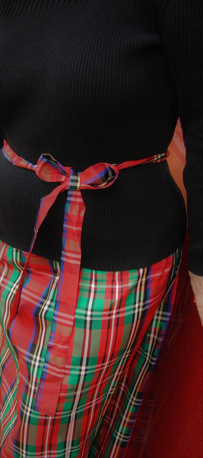skirt7 (2)